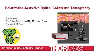 Polarization-Sensitive Optical Coherence Tomography