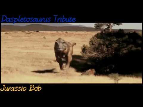 Daspletosaurus Tribute/I