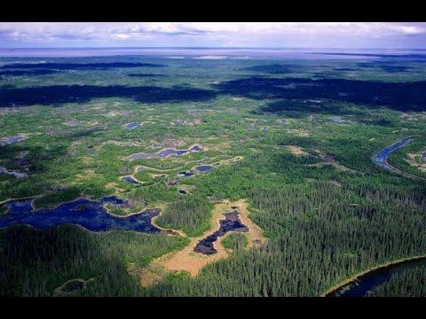 Дикая Канада. Часть 2.Западные территории