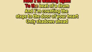 DON'T DREAM IT'S OVER crowded house best karaoke instrumental lyrics