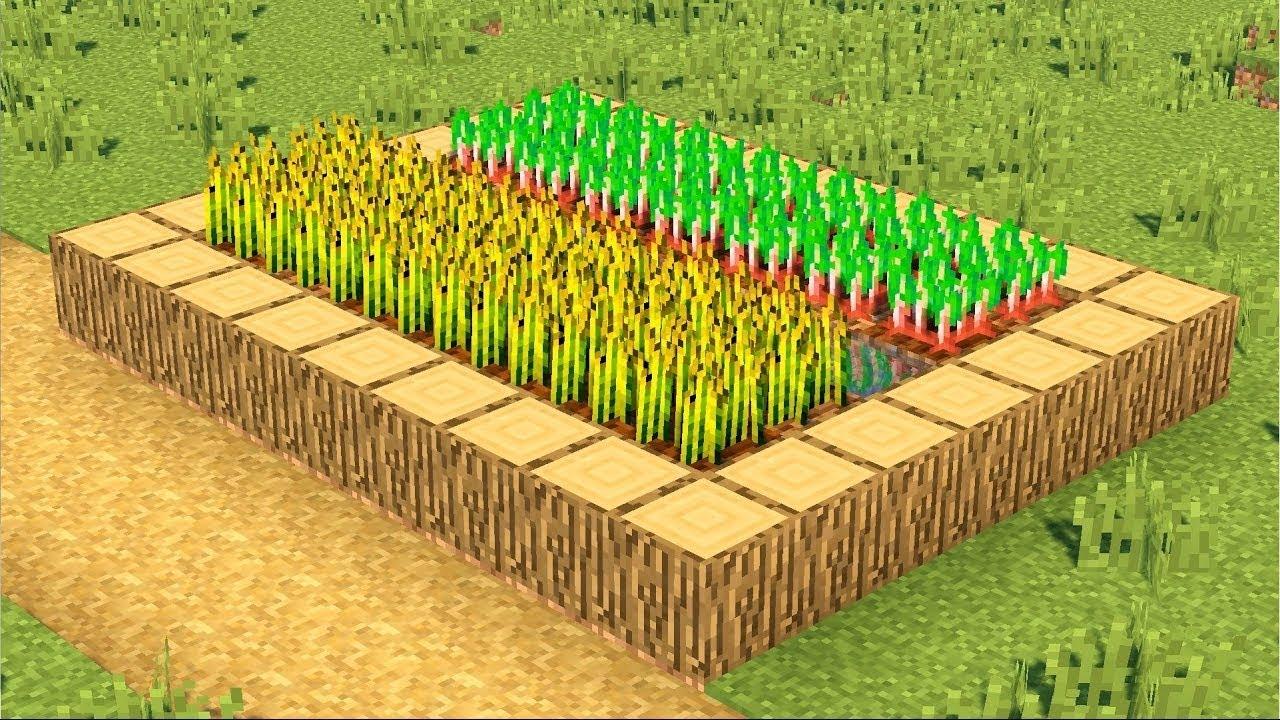 как выращивать рис в майнкрафте