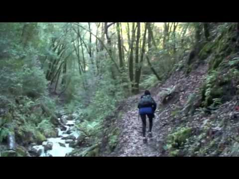 125.Uvas Canyon, Santa Teresa County Park Ca, Waterfall hiking, 12 12