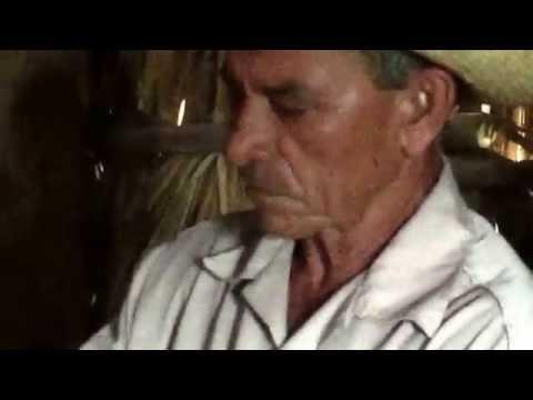 Cuban cigar rolling by expert local farmer at tobacco plantation, Pinar del Rio west of Havana Cuba