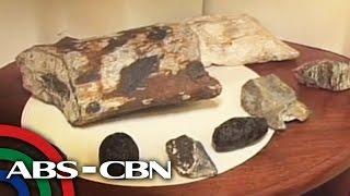 TV Patrol: Buto ng mga sinaunang hayop nahukay sa Kalinga