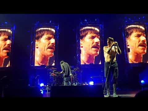 Red Hot Chili Peppers - Under The Bridge [Live Hobart Feb 17th 2019]