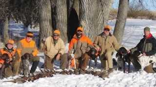 North Dakota Pheasant Hunt 2014
