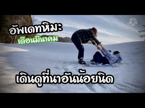 เดินดูหิมะที่ญี่ปุ่น เดือนมีนาคม   ไปแอบเล่นสกีหลังบ้าน
