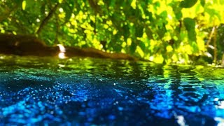 Peaceful Stream Sounds 10 Hours | Sleep, Study, Focus | Water White Noise