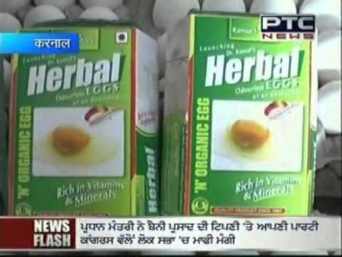 News Herbal Odorless Eggs.wmv