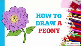 How to Draw a Peony in a Few Easy Steps: Drawing Tutorial for Kids and Beginners