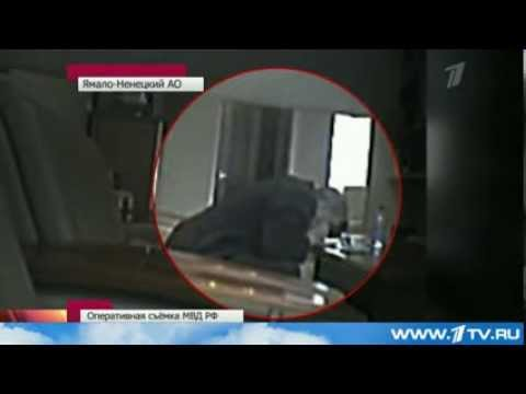 Российский чиновник нюхает # кокаин прямо на работе