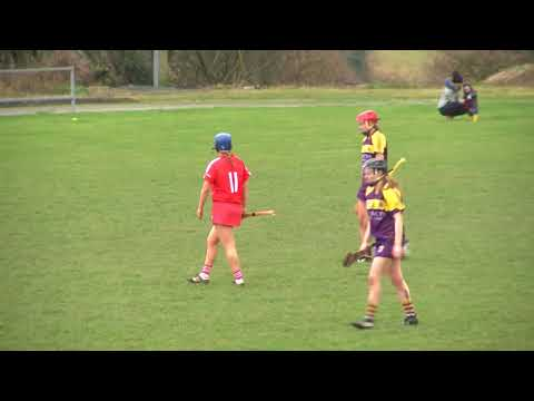 Cork V Wexford - National Camogie League Highlights