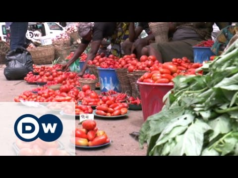 Nigeria: pest turns staple food into luxury | DW News