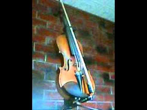 Wounded heart  Bonnie raitt  ヒゲバイオリンギター弾き語り