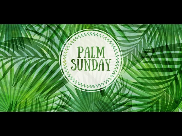 March 28, 2021: Palm Sunday | Peace March