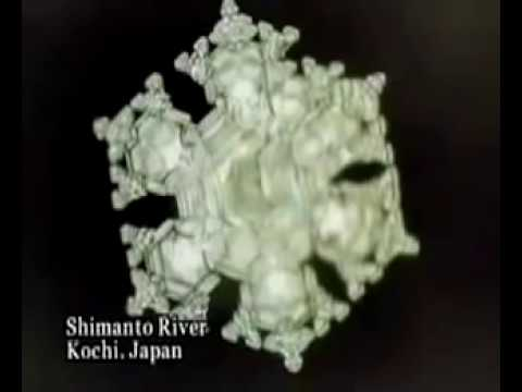 How your consciousness directly affects the universe Dr. Emoto