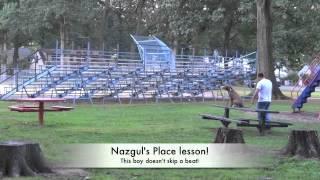 Pit Bull Off Leash Nj Dog Training Place Lesson