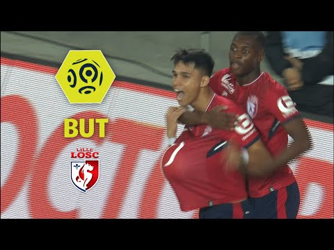 But Luiz ARAUJO (12') / LOSC - ESTAC Troyes (2-2)  / 2017-18