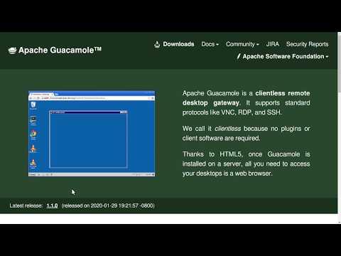 Teletraballo: Pílula sobre Guacamole