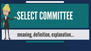 What is SELECT COMMITTEE? What does SELECT COMMITTEE mean? SELECT COMMITTEE meaning & explanation
