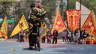 New York NYHSK Hung Sing Kwoon Lion Dance 2019