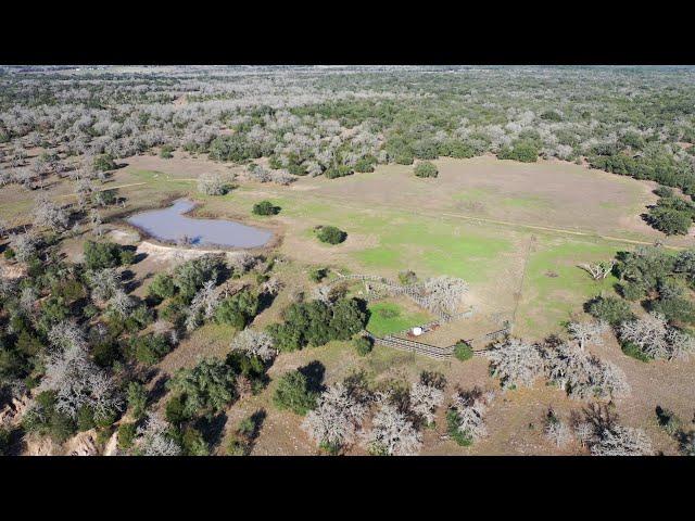 K Bar Ranch - 965± Acres for Sale Hallettsville TX V2