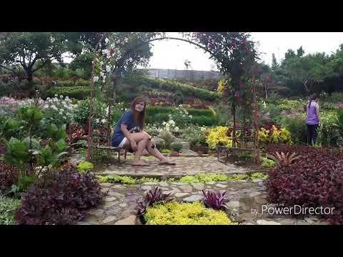 Buwakan ni Alejandra in Balamban Cebu using Zhiyun Smooth Q + GoPro Hero 5