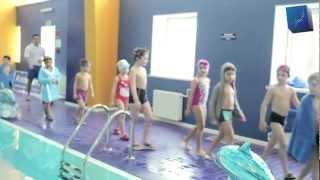 Детские соревнования по плаванию [ALLIGATOR]
