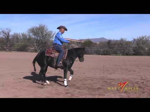 Matt Mills Reining ' Keeping Your Horse Focused When They Are Feeling FRESH '