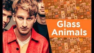 VOCÊ CONHECE GLASS ANIMALS?