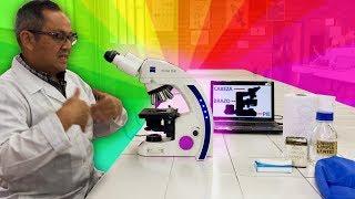 Microscopio Compuesto: manejo, funcionamiento y cuidados.