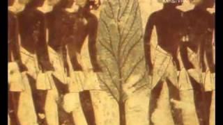 Времена и воины. Воины фараона.