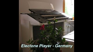 Night Rhythm (Lee Ritenour) performed on Electone by Electone Player