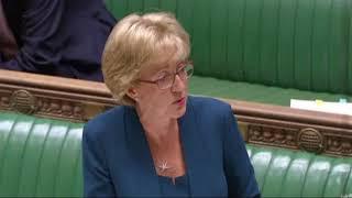 John Bercow's awkward clash with Tory MP