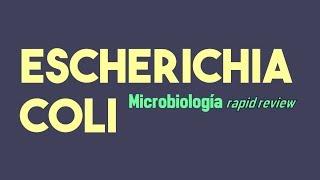 Escherichia Coli, Revisión Rápida