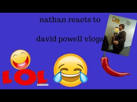 nathan reacts  david powell vlogs and misha (pokemon go kid)