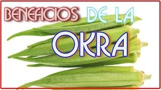 Beneficios De La Okra -La Okra o Quibombó es una Medicina Natural Para La Diabetes