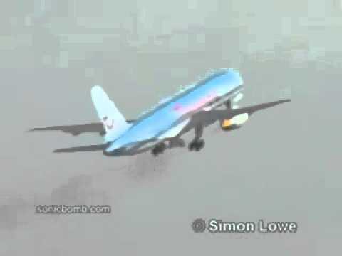 Птица попала в двигатель самолета