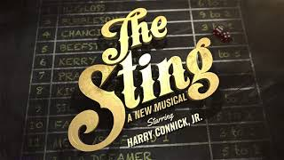 The Sting at Paper Mill Playhouse, TV Spot