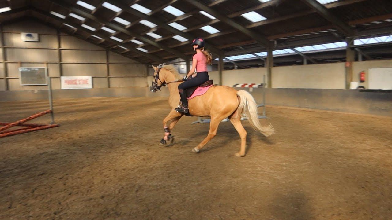 Trainen met Bella Blondie en Boris - Weekvlog 2/2 - * Hart voor Paarden *