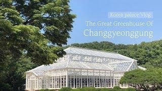 고궁 브이로그[ Korea Palace Vlog]- 창…