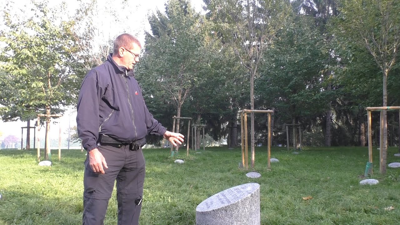 Monte stella progetto invasivo per il giardino dei giusti youtube - Il giardino dei giusti ...