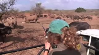 مؤتمر دولي بجوهانسبرغ عن الحيوانات المعرضة للانقراض