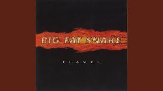 Watch Big Fat Snake I Need You video