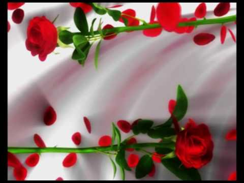 Free Download Wedding Background Hd Free Motion Background Hd Free Wedding Graphics Wed 02 030 Youtube