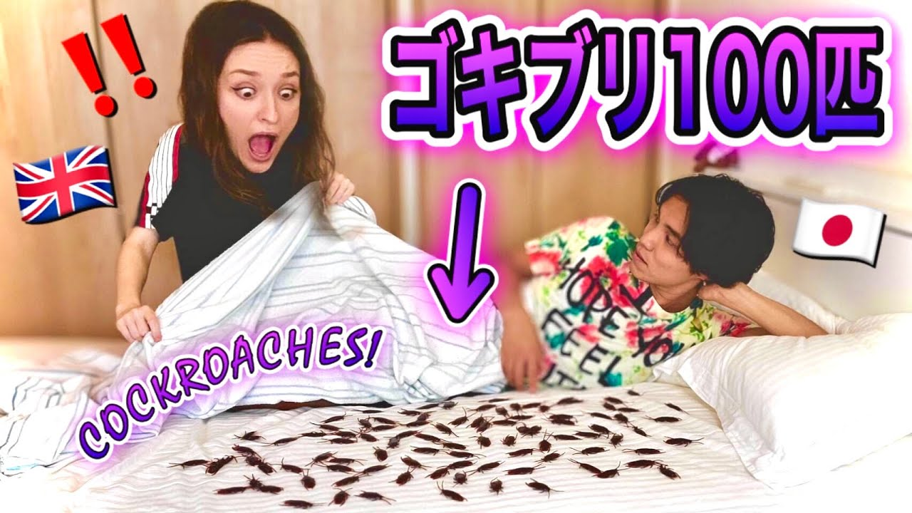 100 COCKROACHES PRANK On My Girlfriend! *she screamed* | AMWF British Japanese Couple