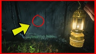 DON'T GO TO THE ROANOKE FOREST AT 3:00AM.. (Red Dead Redemption 2 ASMR)