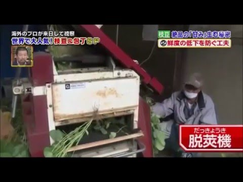 Japanese TV Show: Segment About Edamame Featuring Linda Fritz