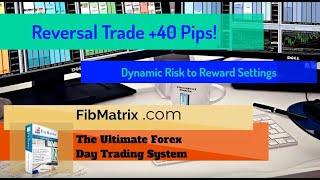 Awesome Reversal Trade +40 Pips! Dynamic Stops with Automated Forex Trading Software