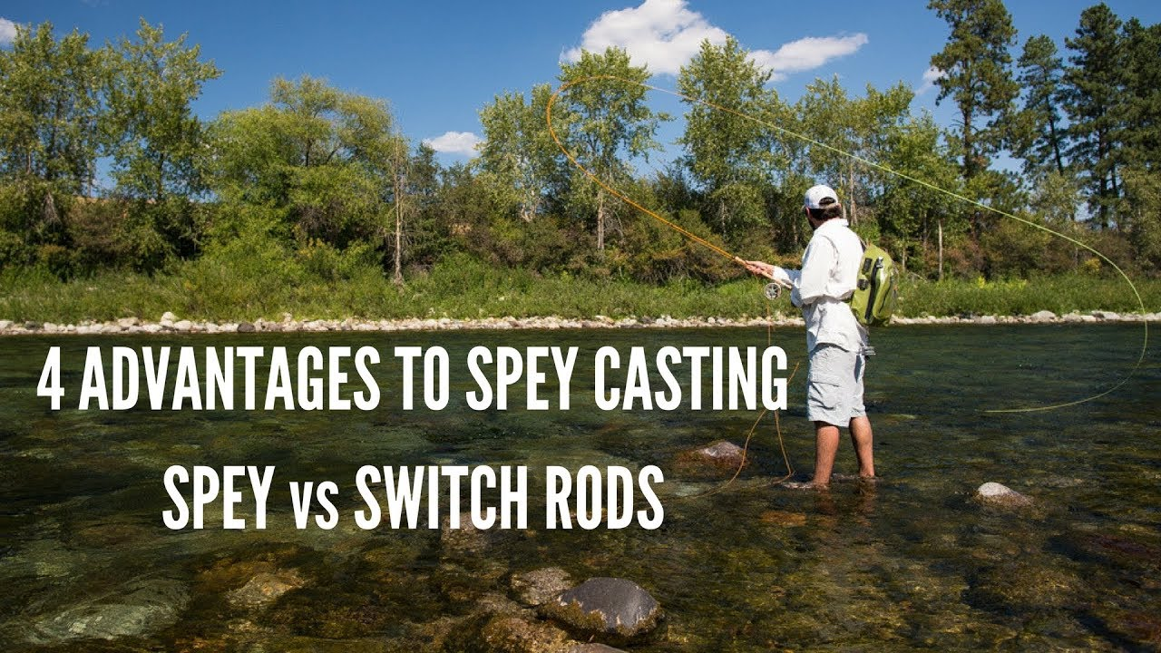 Spey vs Switch Rods and Spey Casting Advantages